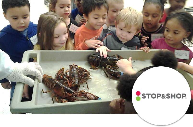 Stop & Shop - Kid Healthy Ideas